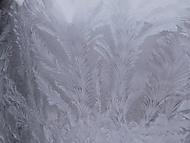 Ledová krása (Naďka)