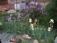 Ještě trochu jara (Naďka)