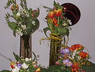 Flora 2015 (Neregistrovaný)
