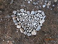Srdce z kamení... (Neregistrovaný)
