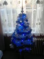 Muj druhy Vanocni stromek :-) (Belle.)