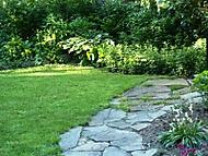 a konecne pokosena trava (kočičí)