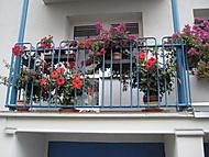 balkon 2016 (bouga)