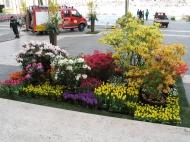 Květinová výzdoba před velikonočním projevem papeže (Larssen)
