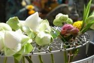 Lotosové květy na oltáři (Thajsko) (Larssen)