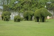 Výzdoba královské zahrady u Bangkoku (Larssen)