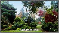 Zahrada plná čarověníků. (wbgarden)