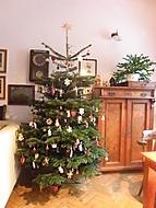 Náš vánoční stromek (Neregistrovaný)
