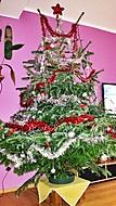 Stromeček pro Máju (Neregistrovaný)