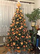 náš tohtoročný stromček (dominikacs)