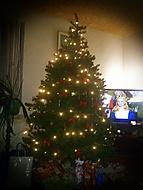 Vánoční Stromek Jelínků :P :D (Neregistrovaný)