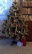 babiččin vánoční stromek (Neregistrovaný)