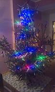Náš strom :) (Neregistrovaný)