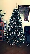 Náš vianočný stromček (Neregistrovaný)