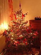 Senomatské Vánoce (Neregistrovaný)