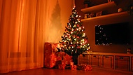První Vánoce (Neregistrovaný)