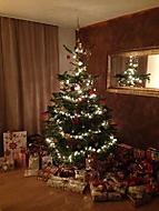 Vánoční stromeček (Neregistrovaný)