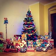 #christmastree (Neregistrovaný)