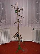 Stromeček (Neregistrovaný)